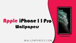 خلفيات iPhone 11 Pro و iPhone 11 Pro Max الاصلية الثابتة والمتحركة