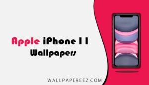 خلفيات iPhone 11 الاصلية الثابتة والمتحركة