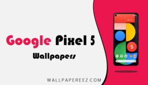 خلفيات Google Pixel 5 الاصلية | خلفيات للجوال روعة