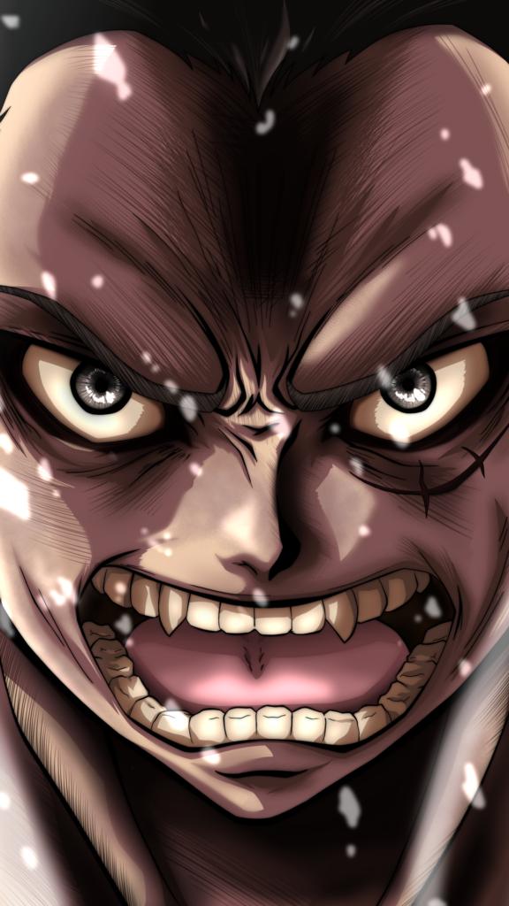 خلفيات انمي ون بيس One Piece (5)