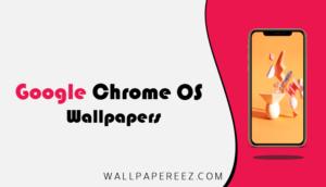خلفيات Google Chrome OS الاصلية | خلفيات جوال روعة