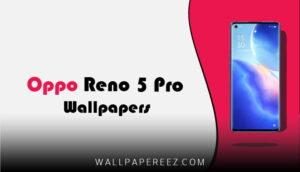 خلفيات Oppo Reno 5 Pro الاصلية | خلفيات جوال بدقة عالية