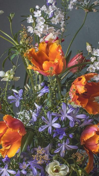 تحميل خلفيات ورد طبيعي لون ازرق وبرتقالي