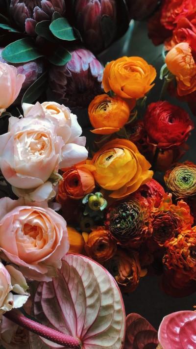 تحميل خلفيات ورد طبيعي لون ابيض و وردي و احمر