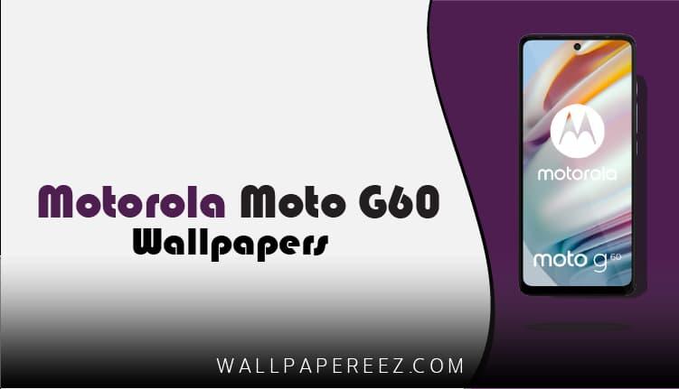 تنزيل خلفيات موتورولا موتو جي 60 الرسمية